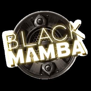 Black Mamba Slot Logo